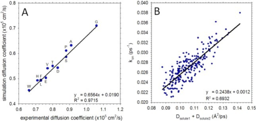 Translationaldiffusion coefficients and association kinetics ofamino acids calculated from all-atom MD simulations. (A) Translationaldiffusion coefficients of 12 amino acids calculated from MD and comparedto experimental data from Longsworth.97 Each symbol is labeled using the one letter amino acid code. (B)Plot showing the correlation between the calculated effective associationrate constant (kon) and the sum of theindividual amino acid translational diffusion coefficients. Each symbolrepresents a different amino acid pair.