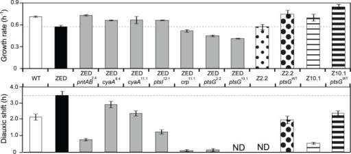 Effects of adaptive mutations on growth rates and diauxic shifts.Dashed lines indicate the phenotype of E. coli ZED. Error bars are 95% C.I. based on six independent measurements. ND, no diauxic growth.