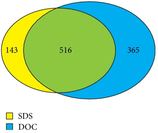 A comparison between the identified proteins from SDS-heat- and DOC-heat-extracted samples. A total of 1,024 unique proteins were identified from 1D shotgun analysis.