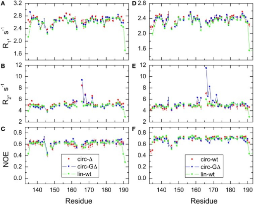 Comparison of the 15N relaxation rates, R1, R2, and heteronuclear NOE, for the SH3 constructs studied here. Shown are data measured at 500 MHz (A–C) for SH3circ-Δ (red circles), SH3circ-GΔ (blue), and SH3lin-wt (green) and at 600 MHz (D–F) for SH3circ-GΔ (blue), SH3circ-wt (red squares), and SH3lin-wt (green).