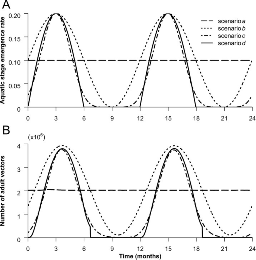 Aquatic stage emergence rate (A) and adult vector population patterns (B).The 4 lines represent the value taken by the emergence rate φ(t) and the adult vector population (NV) over time for each seasonality scenario. In the simulations, the one-year pattern is repeated for as many years as needed.