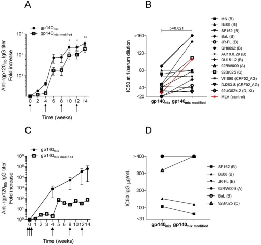 Comparison of the immune response in vaccinated guinea pigs (A,B) and rabbits (C,D) with plasmid DNA encoding syn.gp140mix or syn.gp140mix modified. Average IgG response against recombinant gp120IIIb (rgp120IIIb) in immunized (A) guinea pigs (n = 4) and (C) rabbits (n = 4). Immunization time points are indicated with arrows. Asterisk indicates significant difference between the two immunization groups (* p < 0.05, ** p < 0.01, two-way ANOVA). Average neutralizing activity, expressed as IC50, of (B) diluted guinea pig serum or (D) purified rabbit IgG from week 14 animal sera against pseudotype virus strains of clade A–D and CRF02_AG. Amphotropic murine leukemia virus (MLV) pseudotype virus was included as control for the non-specific activity in experiments with guinea pig serum (red). Results from syn.gp140mix immunizations were derived from Figure 2.