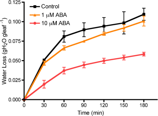 The effect of a 4-h treatment of ABA on water loss in the leaf dehydration assay. Each data point is presented as the mean±s.e.m. Control (n=2); 1 μM and 10 μM ABA (n=3).