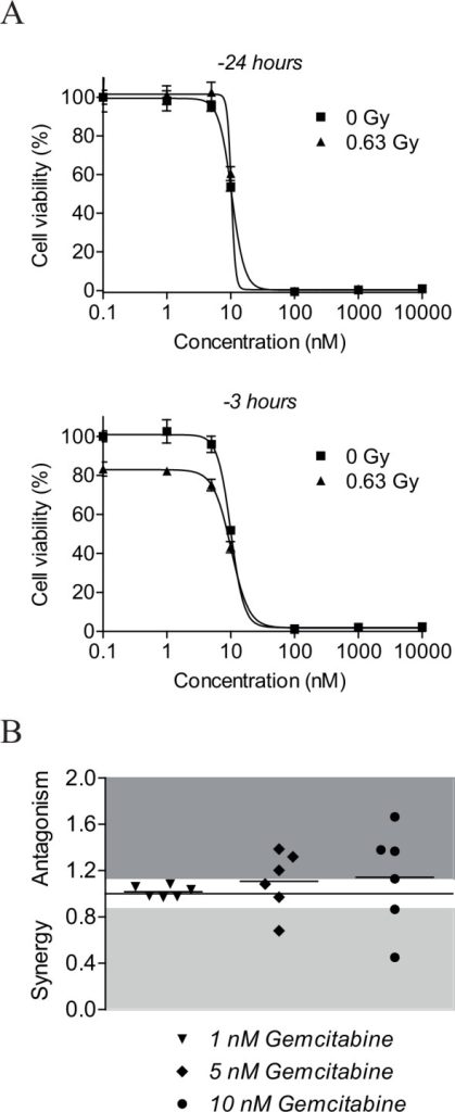 NU7026 more potently radiosensitizes neuroblastoma cells than gemcitabine.(A) Cell viability of NGP cells after co-treatment with gemcitabine and IR. Cells were pre-treated with 0, 1, 5, 10 or 100 nM or 1 or 10 μM gemcitabine for 3 or 24 h before exposure to 0.63 Gy IR. At 96 h after IR-exposure, MTT cell proliferation assays were performed to study effects on cell viability. Data represent the mean (n = 4) +/- SD. (B) Radiosensitizing effects of 1, 5 and 10 nM gemcitabine for neuroblastoma cell lines NGP, SHSY5Y, SHEP2, SJNB12, LAN5 and SKNBE(2). Cells were pre-treated with gemcitabine for 3 h before exposure to 0.63 Gy IR. At 96 h after IR-exposure, MTT cell proliferation assays were performed to assess cell viability (n = 4 for each cell line). Radiosensitizing effects were estimated by calculating combination indices (CI) according to Chou and Talalay [40], given on the Y-axis. CI > 1.1 is antagonistic (dark grey), 1.1 ≥ CI ≥ 0.9 is additive (white) and CI < 0.9 is synergistic (light grey). Horizontal lines between the symbols represent the mean combined effects.