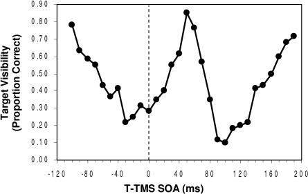 Visibility (in proportion correct identification) of the target as a							function of the onset asynchrony separating it from the TMS pulse.							Negative SOAs: TMS precedes target; positive SOAs: TMS follows target.							(Adapted from Corthout, Uttl, Ziemann et								al., 1999).