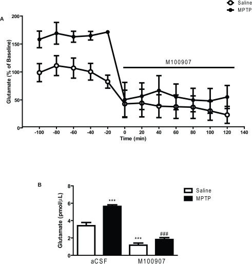 M100907 decreased glutamate levels in the dorsal striatum in saline and MPTP-treated mice. Data are expressed as percentages of values in saline-injected control mice. Dialysis was carried out 3 weeks after MPTP or saline treatment and 7 days after the cannula implantation. (A) Five baseline samples were first collected and then a challenge dose of M100907 (100 nM) and an additional seven samples were collected. (B) The effects of M100907 on extracellular glutamate values of saline and MPTP-treated mice. ***p < 0.001 compared with saline-injected control mice; ###p < 0.001 when compared with MPTP-treated mice. The line segment on time course graphs indicate duration of drug administration.