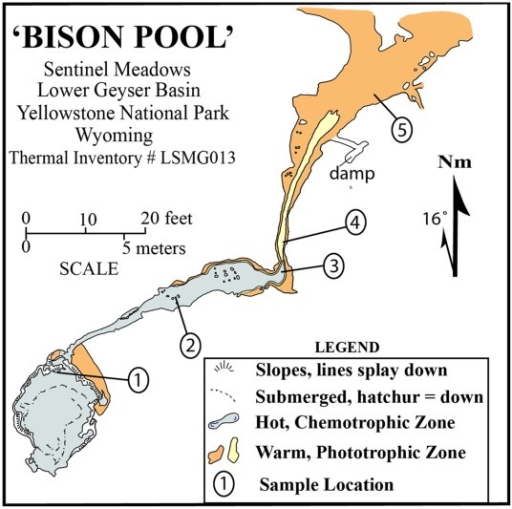 Map of BP, showing the five sample locations used in this study.Modified from Havig et al. (2011) and originally drafted by G.R. Osburn.
