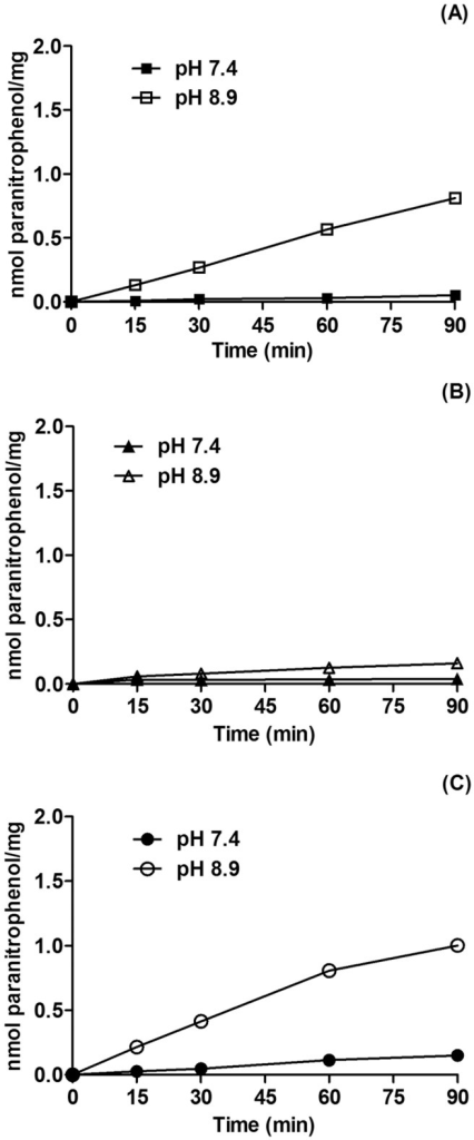 Time kinetics of ecto-nucleotide pyrophosphatase/phosphodiesterase activity by MB cell lines.Following reaching confluence, Daoy (A), ONS76 (B) and D283 (C) MB cell were incubated with 0.5 mM 5′-TMP-p-Nph as described in Materials and Methods. The values represent mean ± SD from six independent experiments performed in triplicate. Specific activities were expressed as nmol ρ-nitrophenol/min/mg of protein.