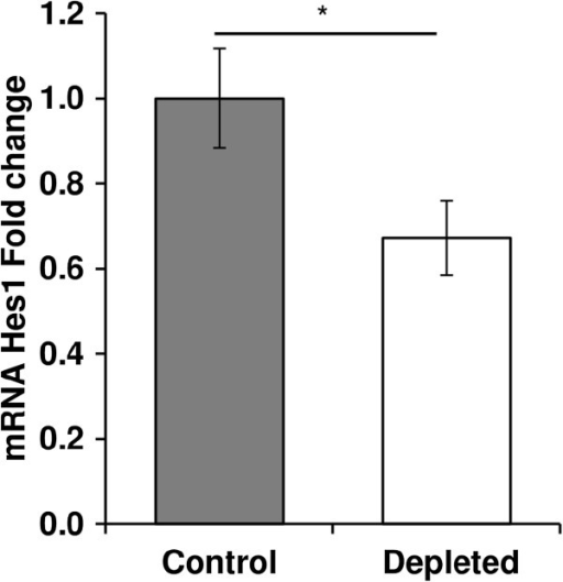 Effect of vitamin D depletion on Hes1 gene expression in old rats. mRNA expression of Hes1 in tibialis anterior of control and depleted rats was analyzed by using a RT2 Profiler Custom PCR Array following the manufacturer's protocol. Hes1 mRNA in control and vitamin D depleted samples was normalized using expression of Tbp as a housekeeping gene and was relative to control group according to the 2-ΔΔCT method (n = 7 for control group and n = 9 for depleted group). The expression of Hes1 was significantly reduced after vitamin D depletion in old rats. Data presented are means ± SEM; *p < 0.05.