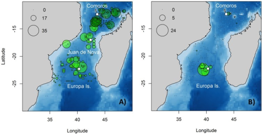 Associated seabird descriptive spatial analysis in the Mozambique Channel.(a) Tern and (b) boobies density (number of birds.km−2) from vessel-based surveys between September and December (2002–2010) (light green) and from aerial survey in December 2009 (dark green) are represented. White rectangles represent the breeding colony in Europa Island, Juan de Nova and the wintering ground in the Comoros.