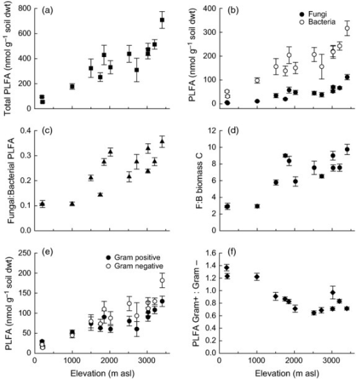 Indicators of microbial biomass and community composition of soils along the elevation gradient: (a) total PLFA, (b) fungal (●) and bacterial (○) PLFA, (c) F:B PLFA, (d) F:B biomass C, (e) gram-positive (●) and gram-negative (○) PLFA and (f) GP:GN PLFA. Data represent mean ± SE (n = 5). Statistical analysis is presented in Table3.