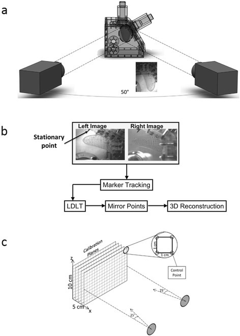 Experimental setup for conducting stereo-photogrammetry and post-processing: (a) shows the arrangement of the dual high-speed cameras relative to the LV chamber, (b) shows workflow used to process the raw image data and obtain the volumetric reconstruction of the 3D geometry, and (c) shows the calibration target used and its position relative to the cameras.