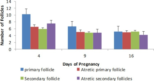The comparison of number of follicles (primary and secondary follicle, atretic primary and secondary follicles) in 4, 9 and 16 days of pregnancy in the experimental groups