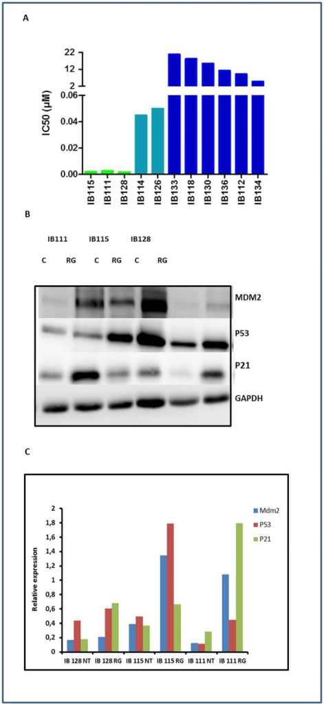 Antiproliferative activity of RG7388 (A) and activation of the p53 (B, C) in human soft-tissue sarcoma (STS) cell lines.(A) IC 50 (μM) of RG-7388 for 11 STS cells, IB111, IB115, IB128, IB114 and IB126 are P53 wild type, the other cell lines are P53-mutated. The experiments presented are representative of at least 3 experiments. Immunoblots are represented on the left (B) and densitometry of the immunoblots on the right (C). Sensitive cells untreated (NT) or exposed to IC50 of RG-7388 (RG) were immunoblotted for MDM2, TP53 and P21 expression.