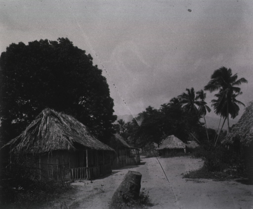 <p>A view of native huts on a street in Siboney.</p>