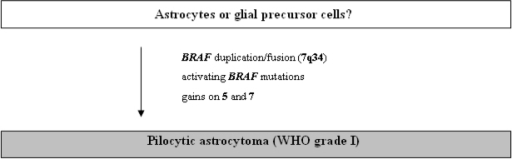 Schematic representation of the molecular pathogenesis of pilocytic astrocytomas.