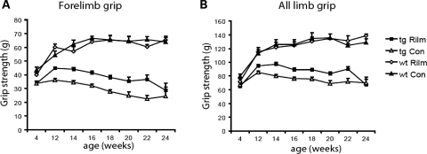 Rilmenidine improved grip strength in a transgenic mouse model of HD. N171-82Q mice were given rilmenidine ip injections four times a week (tg Rilm: 4, 12 and 14 weeks, n = 20; 16 weeks, n = 19; 18 weeks, n = 16; 20 weeks, n = 12; 22 weeks, n = 6 and 24 weeks, n = 2) or ip injections with the carrier substance (tg Con: 4, 12, 14 and 16 weeks, n = 20; 18 weeks, n = 17; 20 weeks, n = 12; 22 weeks, n = 6 and 24 weeks, n = 2) from 5 weeks of age. Wild-type mice were given rilmenidine or placebo injections with the same frequency (wt Rilm and wt Con, n = 5) (A) Forelimb grip strength in N171-82Q mice at 4 weeks (P = n.s.), 12–18 weeks (P < 0.0001), 20 weeks (P = 0.01), 22 weeks (P = 0.0057) and 24 weeks (P = n.s.) (by t-test). Rilmenidine treatment had no effect on grip strength in wild-type mice. (B) All limb grip strength in N171-82Q mice at 4 weeks (P = n.s.), 12 weeks (P = 0.002), 14 weeks (P < 0.0001), 16 weeks (P = 0.0015), 18 weeks (P = 0.0001), 20 weeks (P = 0.01), 22 weeks (P = 0.0129) and 24 weeks (P = n.s.) (by t-test). Error bars represent SEM.