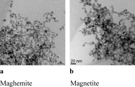 TEM images of (a) maghemite and (b) magnetite.