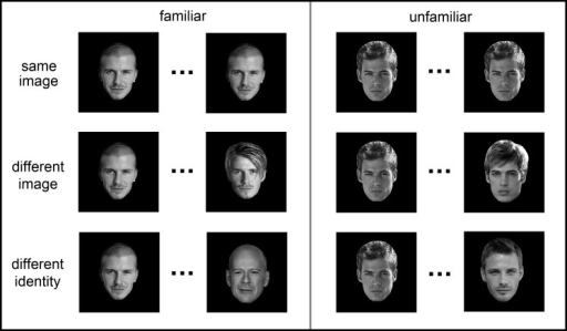 Design and images used in Experiment 1. Successive images were either the same, different images of the same person (different image) or images of different identities. Pairs of images were either familiar or unfamiliar faces.