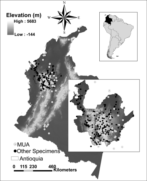 Map of Colombia showing the collection localities for all bird specimens held in the MUA (white dots) and all specimens from Antioquia held in other collections (black dots). The upper right inset highlights Colombia within South America and the lower right inset provides a closer look at the distribution of points in Antioquia.