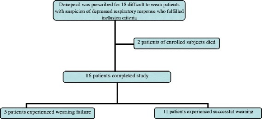 Flow diagram of the patients received donepezil during study follow up. Eleven out of 16 difficult to wean patients who completed the study experienced successful weaning in our study.