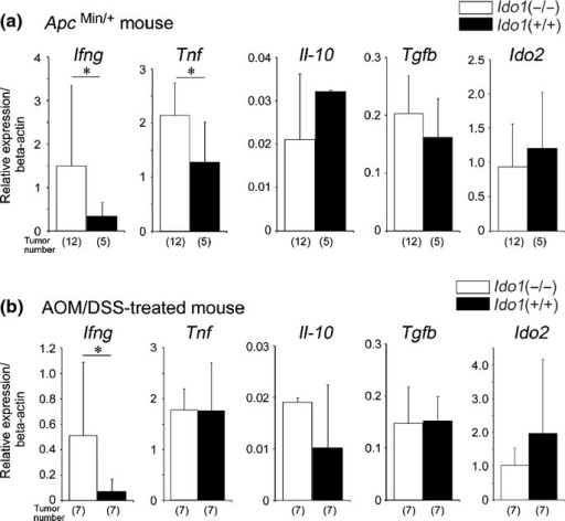 Relative mRNA expression of pro-inflammatory and anti-inflammatory cytokines and Ido2, in colon tumor tissues in ApcMin/+ (a) and AOM/DSS-treated mice (b). Data are presented as the means ± SD. *P < 0.05 by Student's t-test.