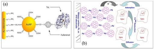 (a) Au-SAM/AuNPs-Linker/Fullerenols/TvL composite material assembly, adapted from [88] and (b) proposed mechanism of cyt c immobilization and electrochemical reduction by C60-Pd polymer film modified electrode, adapted from [89].