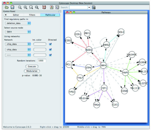 A screenshot of Pathicular. Screenshot of Pathicular running in Cytoscape with an example of a TRI-TRI path motif overrepresented in deletion data for the transcription factor SWI4. Solid edges represent TRI edges, colored by path module membership. Dashed edges represent edges in the deletion data. Solid gray edges are additional TRI edges which do not belong to a TRI-TRI motif in this subnetwork.