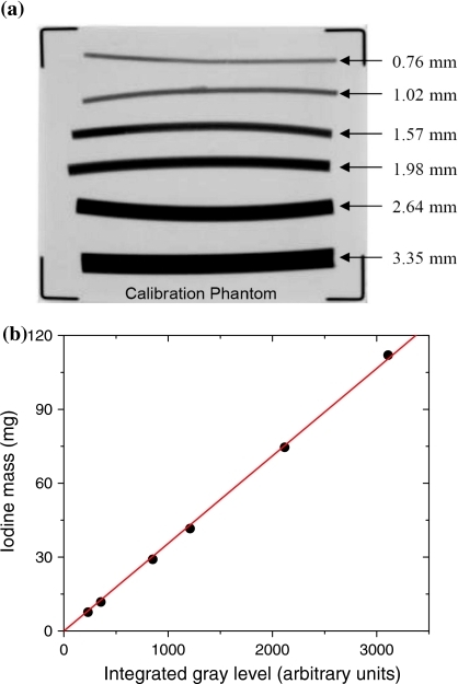 Image of the calibration phantom is shown (a) along with an example of a calibration curve showing the relationship between iodine mass (mg) and measured integrated gray levels (b)