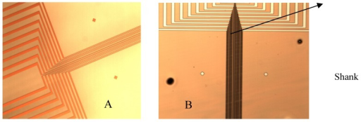 Fabricated microprobe details.