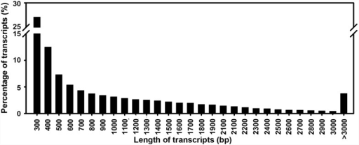 Sequence length distribution of the assembled transcripts.The X-axis shows the range of lengths of the transcript sequences. The Y-axis shows the percentage of transcripts.