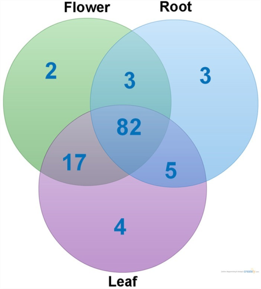 Venn diagram showing the numbers of CYP450 genes expressed across the three tissues.