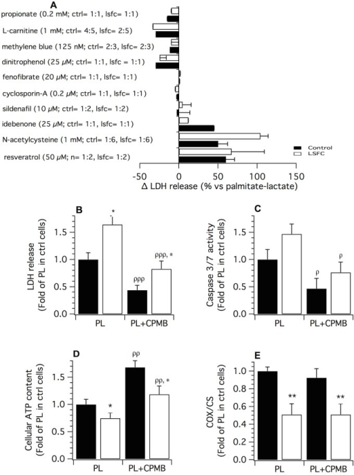 Effect of selected therapeutic agents on palmitate plus lactate (PL)-induced cytotoxicity.(A) Lactate dehydrogenase (LDH) release in control and LSFC fibroblasts exposed to PL in presence or absence of therapeutic compounds. The numbers in brackets (ex: control: n = 2:6) refer to the number of cell lines tested and of experiments, respectively. (B) Mean LDH release (n = 5), (C) Caspase 3/7 activity (n = 5), (D) Cellular ATP content (n = 7) and (E) COX/CS activity ratio (n = 3) measured after exposure to PL (palmitate 1 mM; lactate 10 mM) in absence or presence of CPMB (1 mM L-carnitine; 0.2 mM propionate; 125 nM Methylene blue) for 34 h (LDH release) or 24 h (other parameters). All measurements were performed in 4 control and 3 LSFC cell lines for the aforementioned number of experiments. Data are means ± S.E. and expressed as fold-change relative to the mean value of the PL condition in control (ctrl) cells. Statistical significance of differences between groups and conditions were analyzed with a linear hierarchical model (cf. Methods section). Significantly different from the control cells in the same experimental condition: * p < 0.05, ** p < 0.01. Significantly different from baseline within the same experimental group: ρp < 0.05, ρρp < 0.01, ρρρp < 0.001.