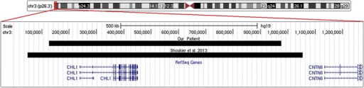 Snapshot of the 3p26.3 region displayed using the UCSC Genome browser [GRCh37/hg19 assembly; http://genome.ucsc.edu] showing the CHL1 duplications seen in the present patient and in the first patient reported in the literature