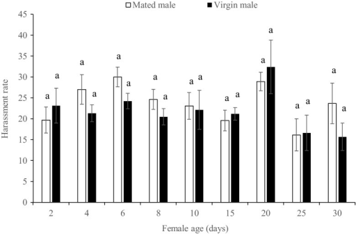 Harassment rate of mated and virgin males toward Thrips tabaci females at different ages. Different letters indicate significant difference (t test, p < 0.05)