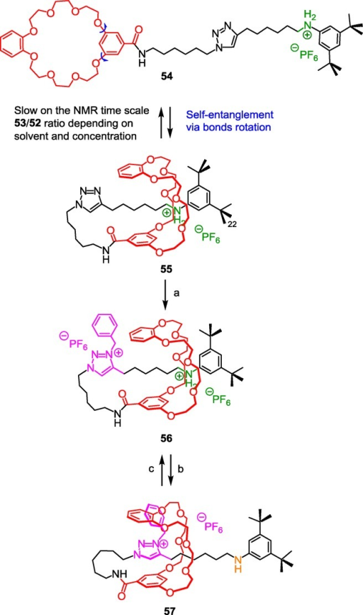 N-benzyltriazolium as both a molecular station and a barrier in a lasso molecular architecture. Reagents and conditions: a) 1) BnBr, CH2Cl2, <5×10−4m, 3 d, RT, 2) NH4PF6, H2O/CH2Cl2, RT, 30 min, 27 %; b) NaOH/H2O (1 m); c) 1) HCl/Et2O, 2) NH4PF6, CH2Cl2/H2O.