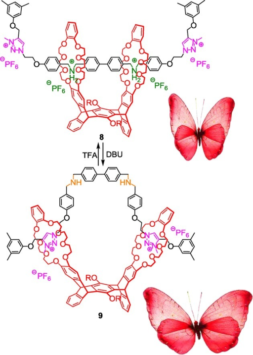 Mimicking the wing-flapping motion of a butterfly using a triazolium-containing pentiptycene bis(crown ether)-based [2](2)rotaxane.