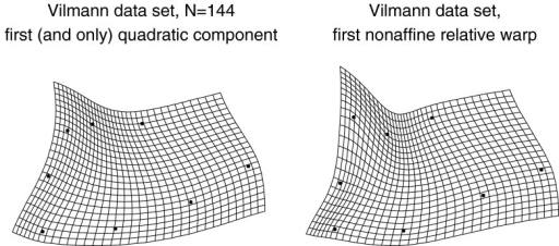 The large-scale quadratic (integrated) trend is indistinguishable from the deflated relative intrinsic warp in Fig. 13, while the first principal component of the nonaffine shape coordinates is indistinguishable from the combination of this component with a local effect at IPP, the same pattern as the reinflated first RIW from Fig. 13. The grid on the left has the same second derivative at every point, and hence could be considered as integrated as any uniform transformation (for which it is the first derivative that is similarly unchanging)