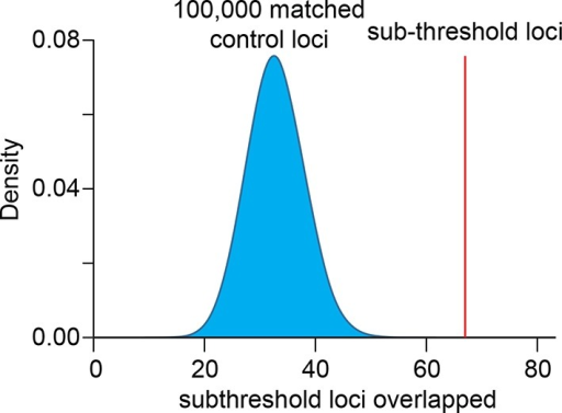 Sub-threshold loci associated with QT interval length are enriched in H3K4me1-defined left ventricle enhancers.Enrichment was calculated by comparing the number of loci that overlap an enhancer against 100,000 sets of randomly sampled control loci matched for genetic properties (LD block size, MAF, distance to nearest gene, number of nearest genes and presence on genotyping array).DOI:http://dx.doi.org/10.7554/eLife.10557.011