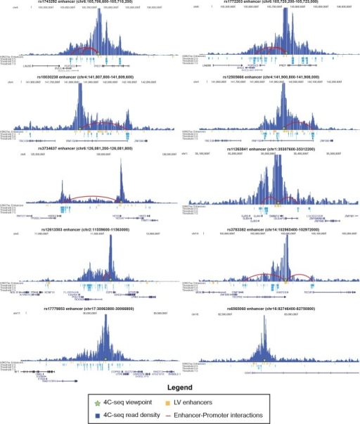 4C-seq interactions with 10 enhancers in 8 sub-threshold loci.Height of blue bars represents interaction strength with 4C viewpoint. Red curves indicate enhancer-promoter interactions called within an annotated GENCODE promoter (up to 2.5 kb upstream of TSS) at a threshold of 5.0.DOI:http://dx.doi.org/10.7554/eLife.10557.016