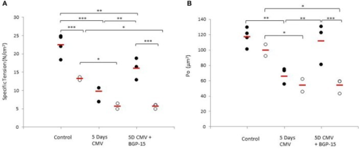 Individual rat single diaphragm muscle fiber. (A) specific force (Po/CSA) and (B) absolute force (Po) measured at fixed sarcomere length in control animals (individual rats: young n = 4 and old n = 2) compared with age-matched animals exposed to CMV for 5 days without (individual rats: young n = 3 and old n = 2) and with BGP-15 (individual rats: young n = 3 and old n = 3). Values are averages of individual data from the different animals and the red line indicates the average for each group. (Filled circles, young; Open circles, old; red line, group average). Significance level, *p < 0.05, **p < 0.01, ***p < 0.001.