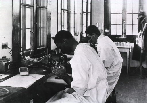 <p>Two laboratory workers, probably U.S. Public Health Service members, examining material under a microscope during the New Orleans plague campaign; worker in foreground possibly African American.</p>