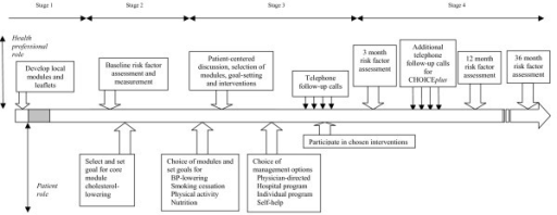 Model of CHOICE (Choice of Health Options In prevention of Cardiovascular Events) program after acute coronary syndrome (ACS).