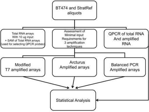 "Study Design – BT474 and Stratagene Universal Human Pooled Reference RNA were used as the substrate for these experiments. 10 ug of total RNA from each were hybridized to microarrays and labeled ""total RNA arrays"". SAM analysis from these total RNA arrays were used to select QPCR genes in an unbiased fashion prior to performing any amplification reaction. Total RNA was serially diluted, amplified, and hybridized to cDNA microarrays. QPCR was performed on total RNA and amplified RNA. Statistical analyses included microarray vs microarray analysis as well as microarray vs QPCR analysis."