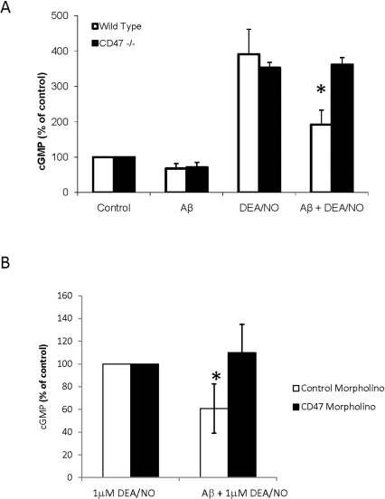 Aβ inhibition of NO signaling is dependent on CD47.A Wild type or CD47−/− primary murine lung endothelial cells were pretreated with 10 µM Aβ followed by 10 µM DEA/NO. B Wild type Jurkat cells were incubated with 10 µM CD47 antisense morpholino or 10 µM of a 5 base mismatched CD47 control morpholino for 48 hrs. Following CD47 knockdown, cells were pretreated with 10 µM Aβ followed by 1 µM DEA/NO. Following treatment, cell were lysed and assayed for cGMP production. n = 3, * denotes P<0.05.