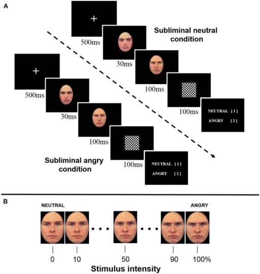 (A) Temporal trial structure for the perceptual decision task. (B) A stimulus set of one model identity parametrically varied in 10% increments ranging from neutral to angry.