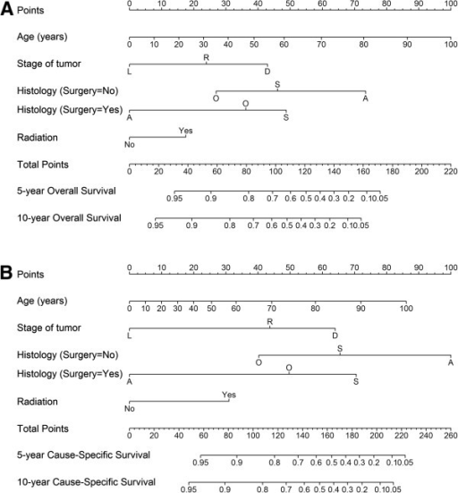 Nomograms for predicting 5- and 10-year overall survival and cause-specific survival. (A) Prediction for overall survival; (B) Prediction for cause-specific survival. Abbreviations: Stage: L, localized; R, regional; D, distant. Histological subtype: S, squamous cell carcinoma; A, adenocarcinoma; O, others. Instructions: Locate the patient's characteristic on the variable row and draw a vertical line straight up to the points row to assign a value of points for the variable. Repeat this process to obtain points for each variable. Add up the total points and drop a vertical line from the total points row to obtain the 5- and 10-year survival.
