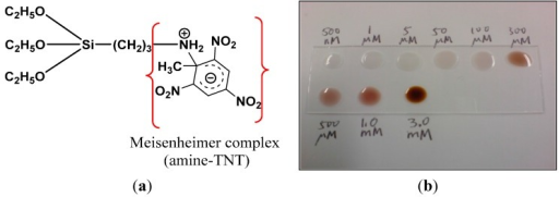 The Meisenheimer amine–TNT interaction demonstrates: (a) reaction between the amine group and TNT molecule and (b) a gradual change in color to the dark red of a TNT anion as the explosive concentration increases.