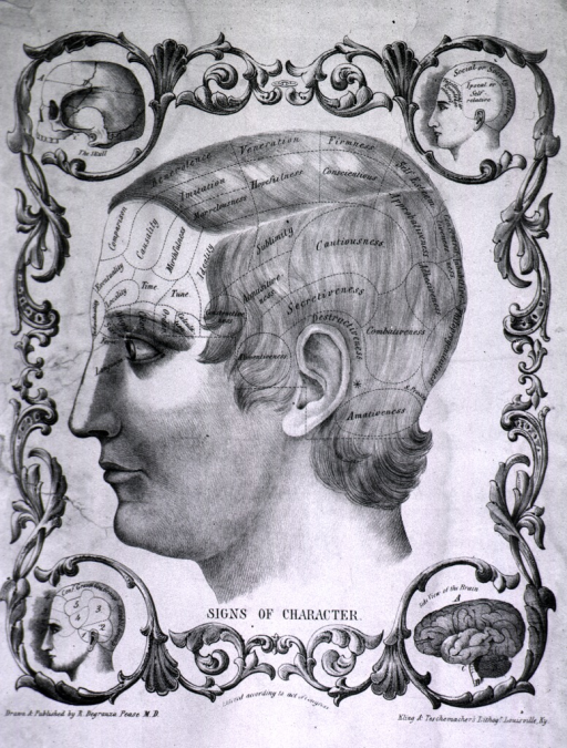 <p>Phrenology poster which shows a profile with labeled sections in an elaborate border.</p>