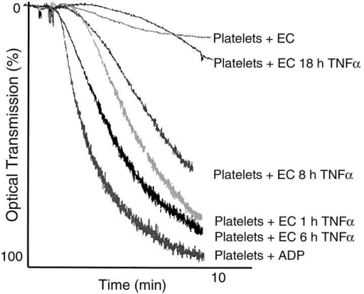 ATPDase antiaggregatory activity is modulated by EC responses to TNFα in vitro. Activation of quiescent porcine EC by 10 ng/ml  human recombinant TNFα from 1 to 8 h in vitro resulted in rapid loss of  the activated EC antiaggregatory phenotype at the time of testing. This  was noted by the development of a permissive environment for platelet  activation in response to 5 μM ADP in vitro. After TNFα stimulation of  EC, reconstitution of functional antiplatelet aggregatory properties was  observed by 18 h.